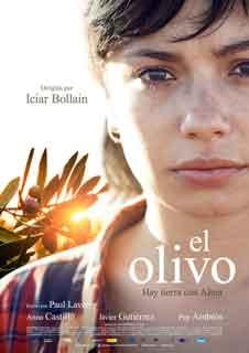 El olivo (DIG)